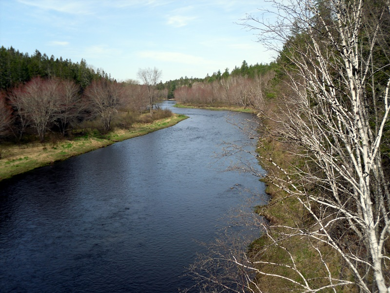 Cains River at Rte.123
